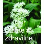 Dišavnice, začimbnice in zdravilne rastline