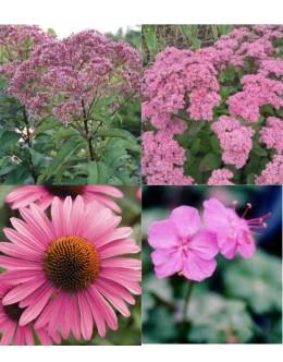 Cvetje v roza tonih (25 kvadratnih metrov - 19,9 EUR/m2)